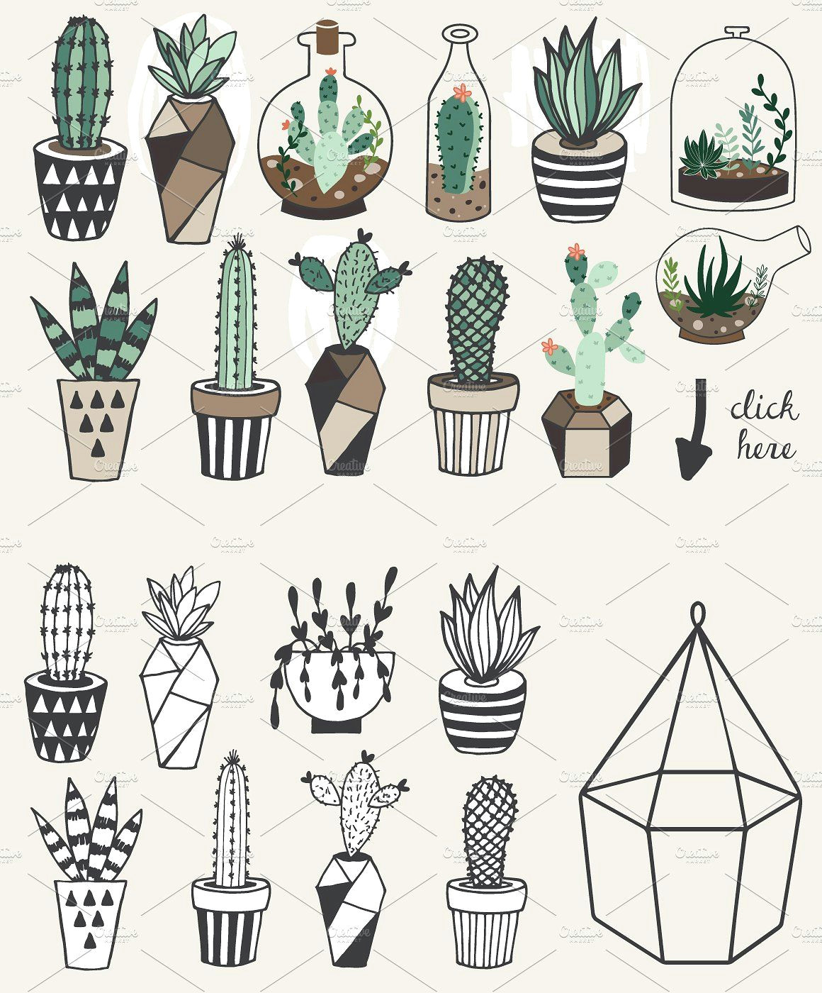 75 off succulents unlimited license by lokko studio on creativemarket succulent drawings