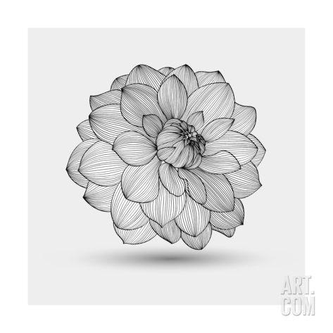 abstract floral flower dahlia art print by helga pataki at art com