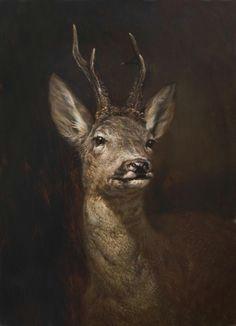 deer roe deer wildlife art wildlife paintings animal paintings deer paintings