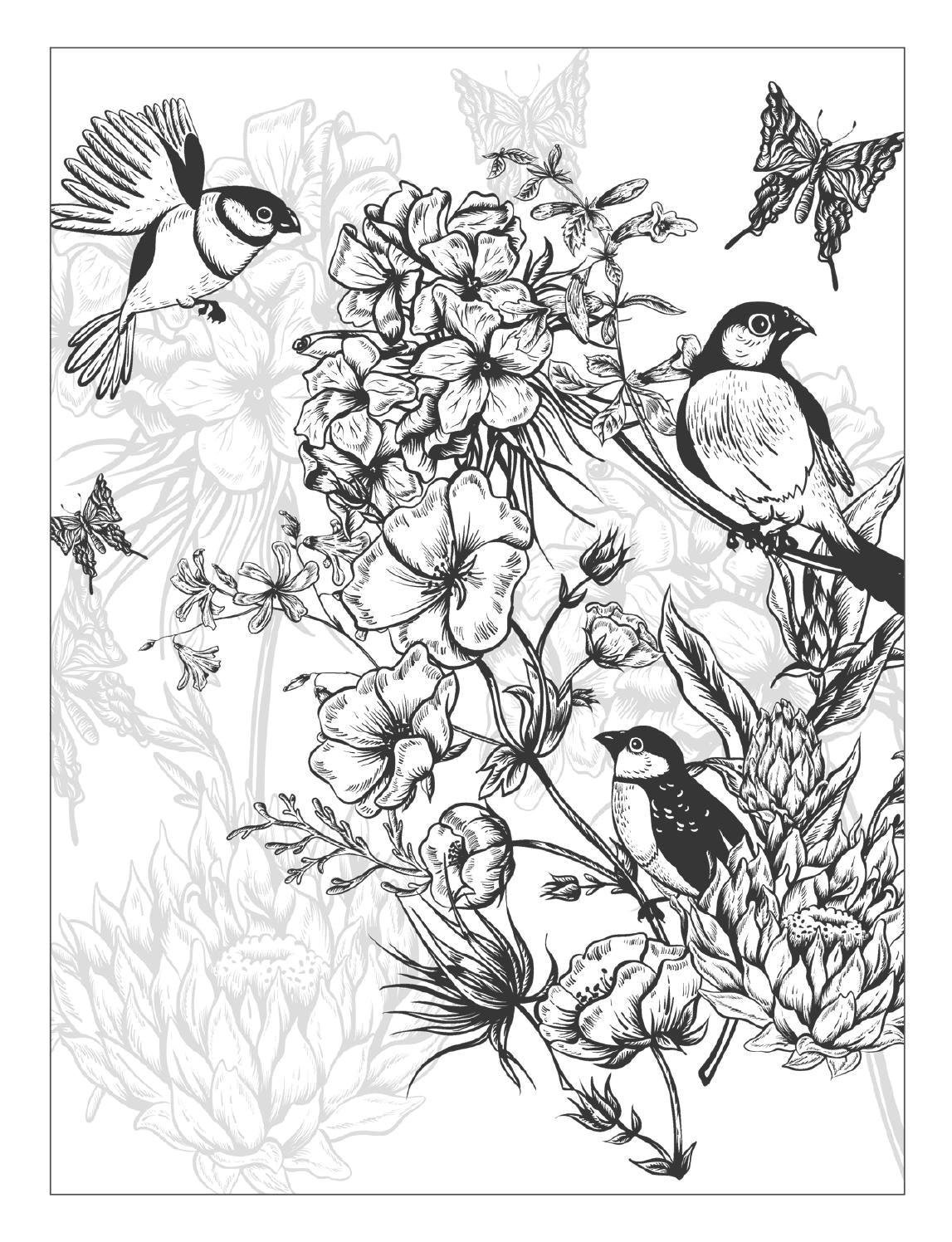 clippedonissuu from beautiful flowers detailed floral designs coloring book previewa i more pins like