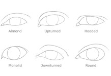 how to draw 6 different eye shapes