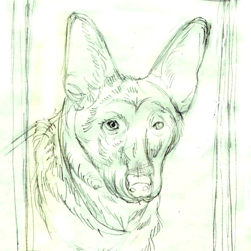 preliminary sketching