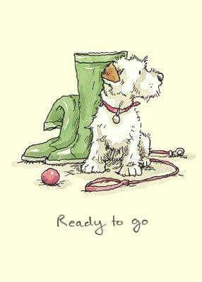 anita jeram dog illustration animal drawings cute drawings dog art watercolor