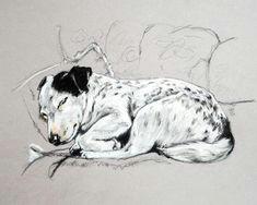 jack russell print terrier art print jack russell sketch jack russell drawing