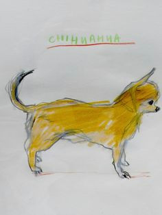 chihuahua art animal sketches dog illustration dream art character design references creature design animal paintings archive library animals dog