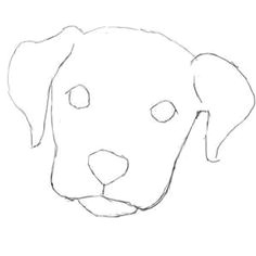 how to draw a dog face super easy yahoo search results yahoo image search results