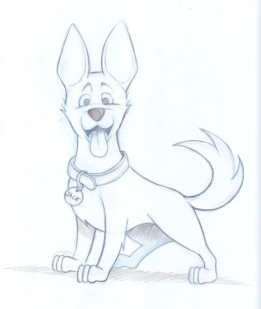 Drawing Dogs Sketch Drawings Of Dogs Kelpie Dog Sketch by Timmcfarlin On Deviantart