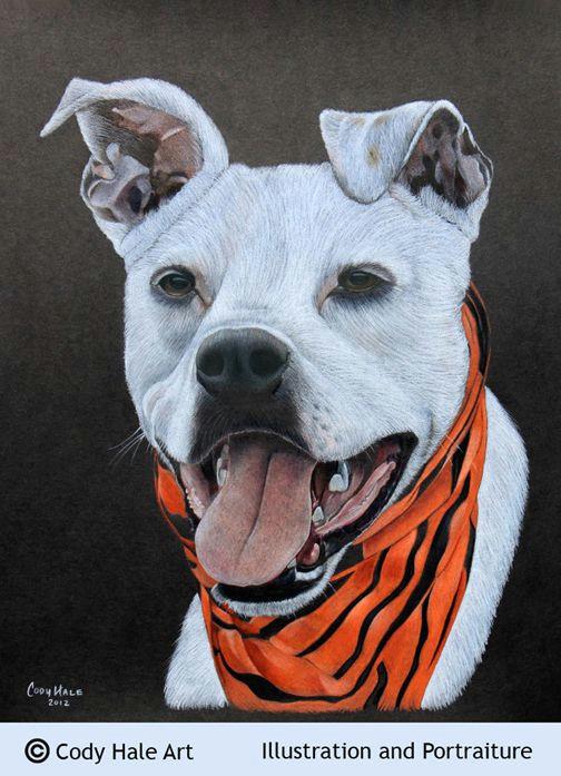 pet portrait colored pencil cody hale art