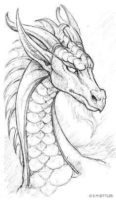 dragon drawings google search mas cool drawings