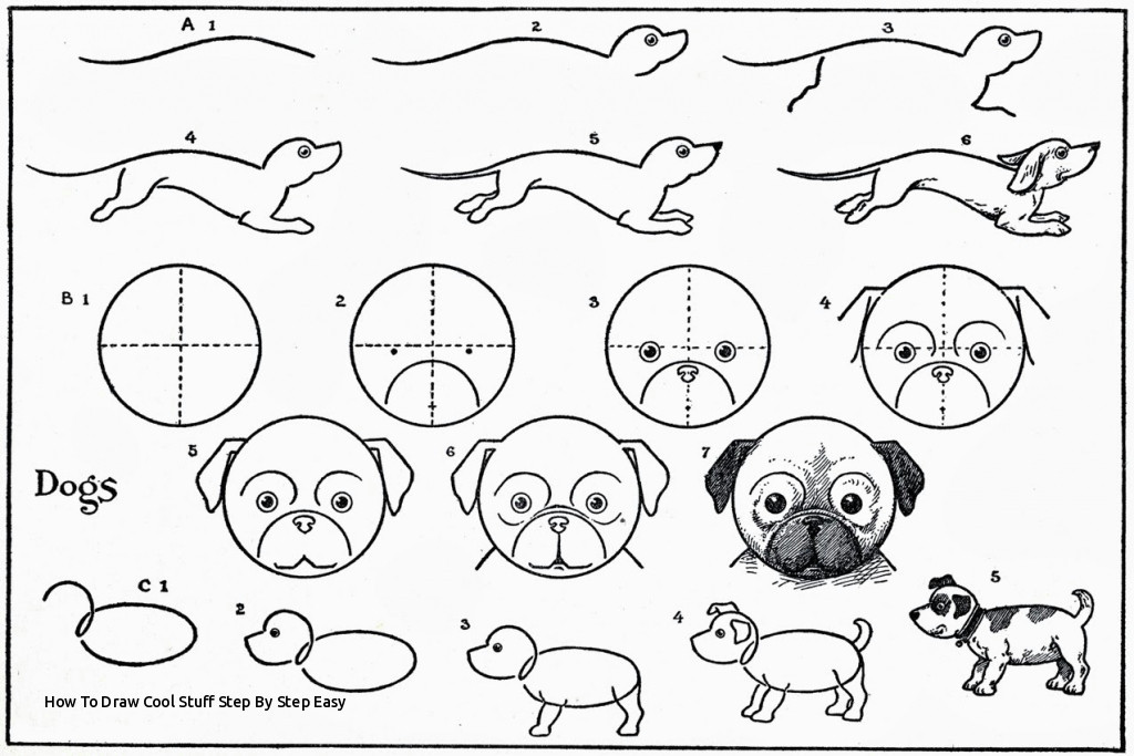 how to draw cool stuff step by step easy easy drawing animals at getdrawings of how