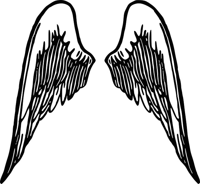 free image on pixabay wings angel feather winged wings wings angel wings clip art angel wings pictures
