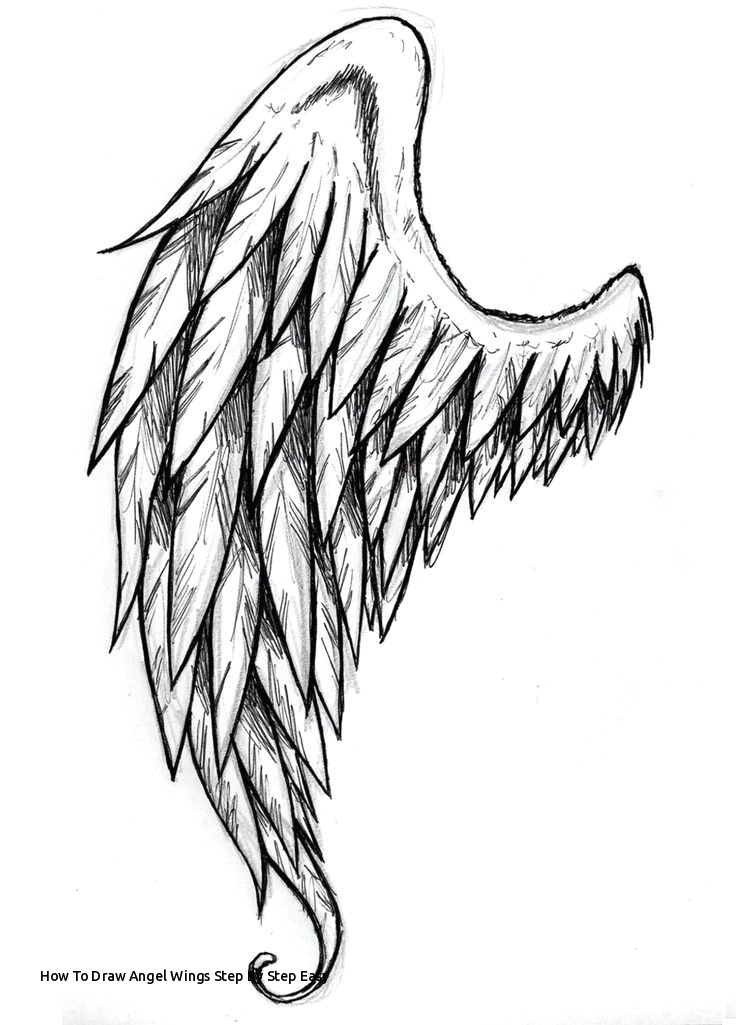 how to draw angel wings step by step easy 463 best angel wings images on pinterest