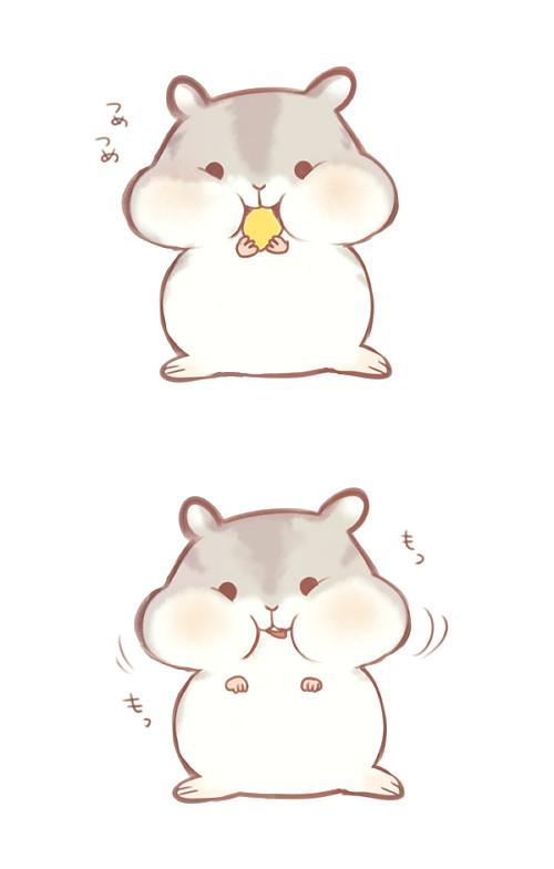 a cute hamster more