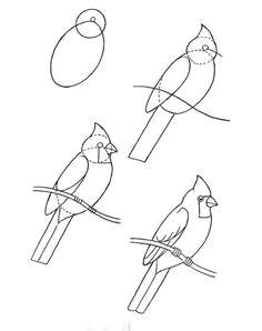 bird drawing how to bird art drawing birds cardinal drawing bird drawings