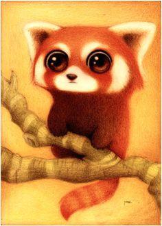 drawing red panda red pandas red panda cartoon deviantart drawings panda drawing