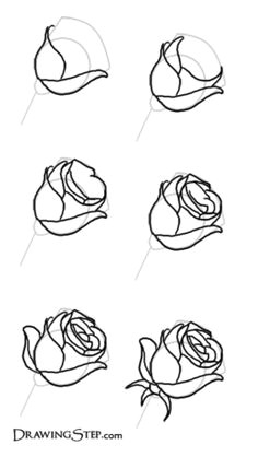 how to draw roses roos tekenen drawing of a rose drawing step rose