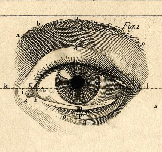 paul bert l annee preparatoire d enseignement scientifique 1887