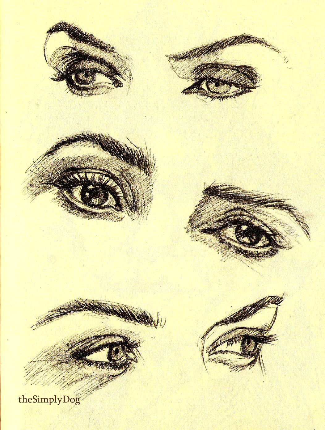 kate winslet anatomy reference art reference kate winslet kurt cobain pencil drawings