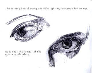 the art of iain mccaig how to draw an eye anatomy