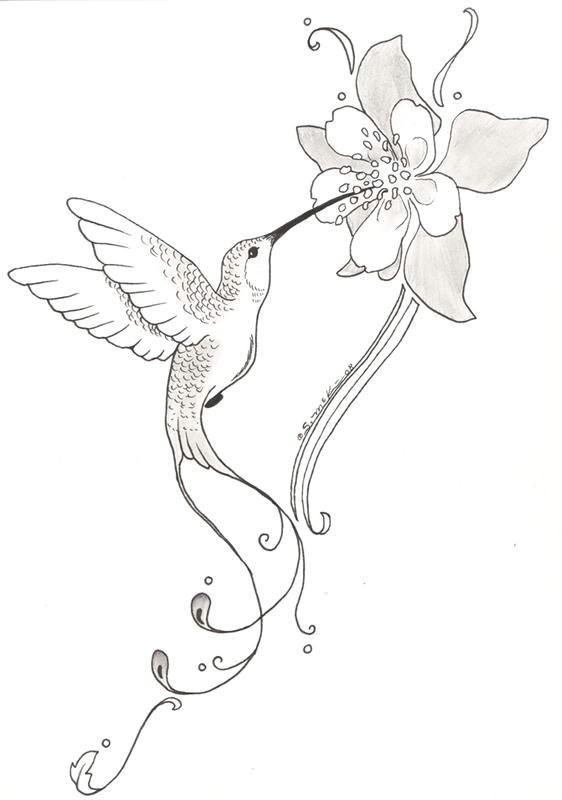 Drawing Flower Gun Hummingbird and Flower Pencil Drawing Google Search Paper Art