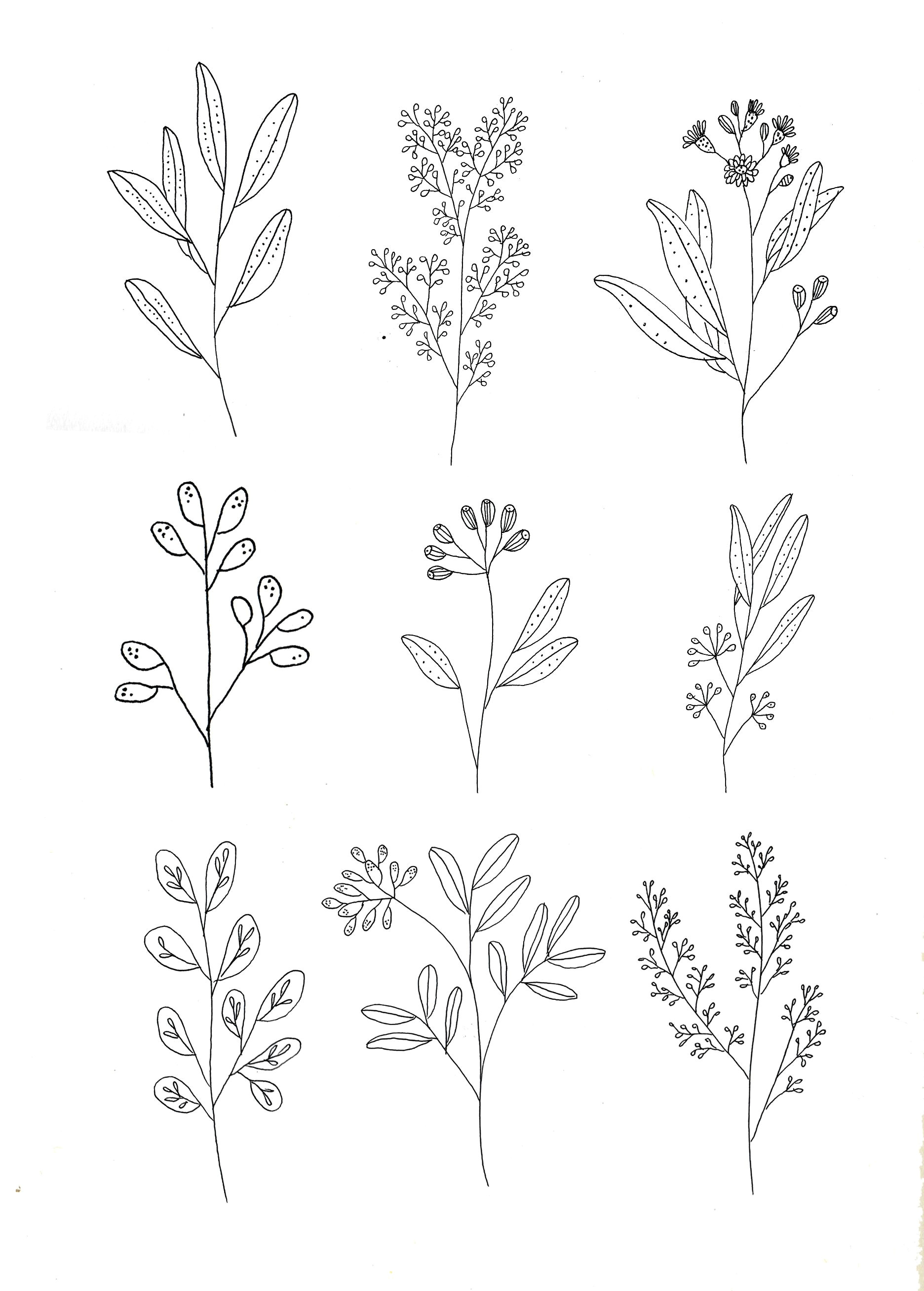 botanics by ryn frank www rynfrank co uk more