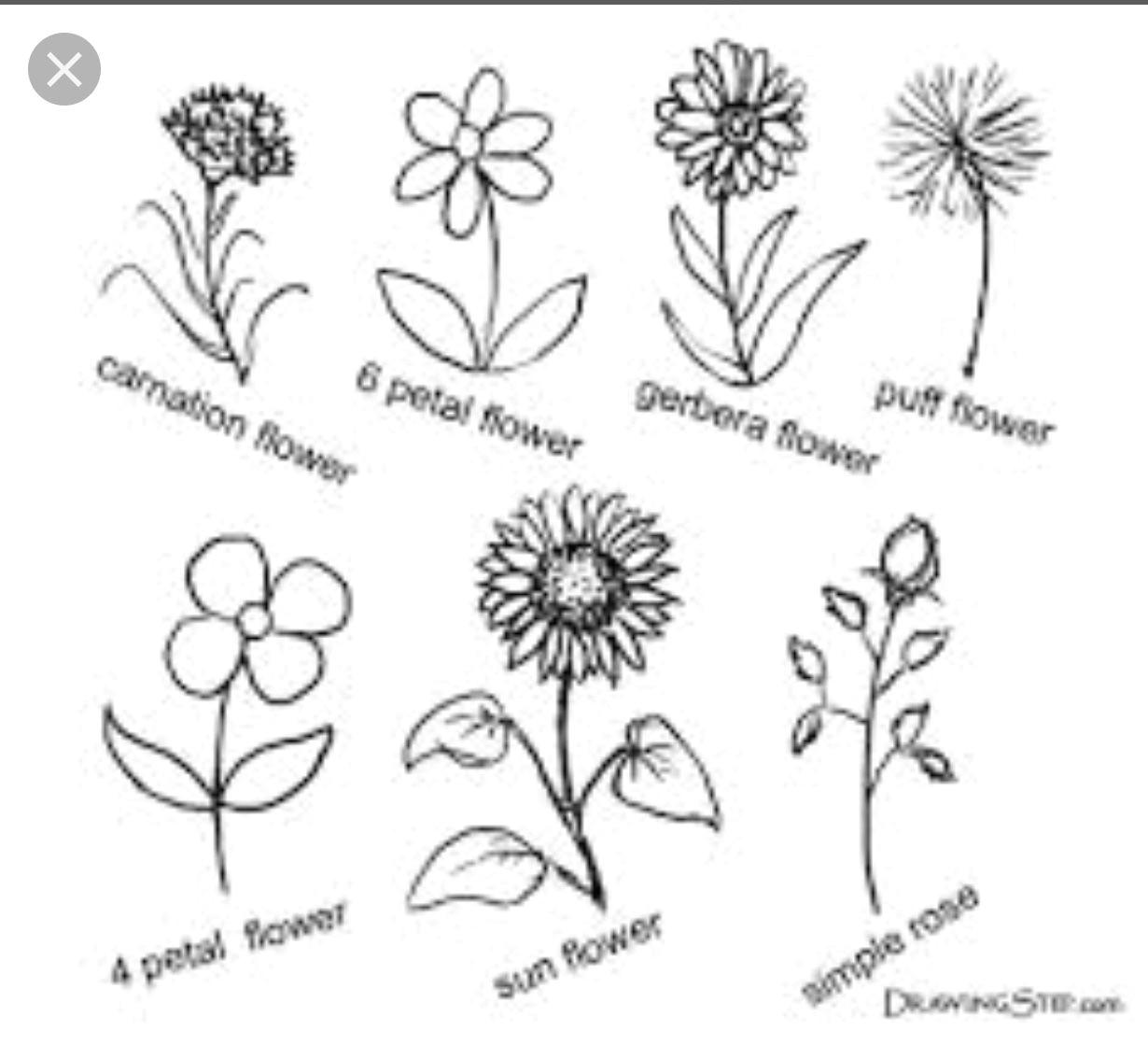 easy flower drawings simple flower drawing simple flowers pencil drawings of flowers