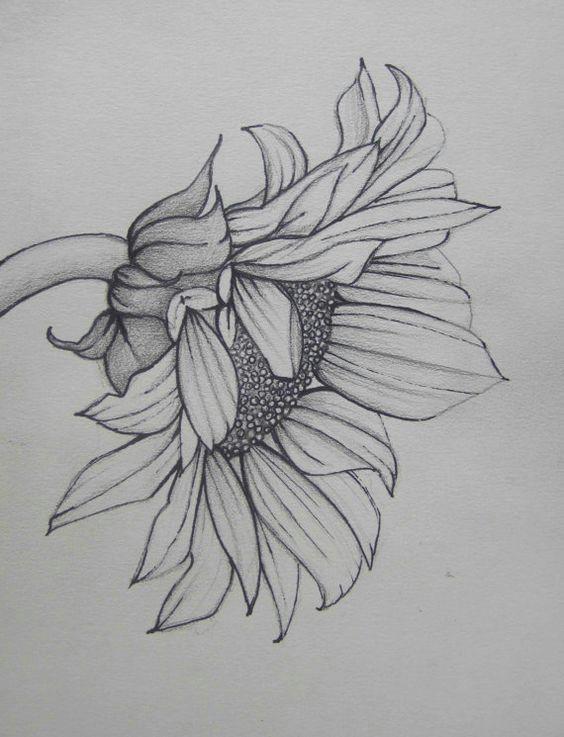 flower pencil drawings flower design drawing simple flower drawing floral drawing drawing