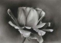 easy charcoal drawings flowers bing images