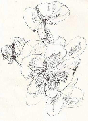 Drawing Flowers In Pen Sketch Pansies Drawing Flowers Ink Pen Drawings Drawings Sketches