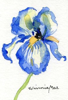 watercolors are always so pretty watercolor flowers watercolor drawing watercolor pictures