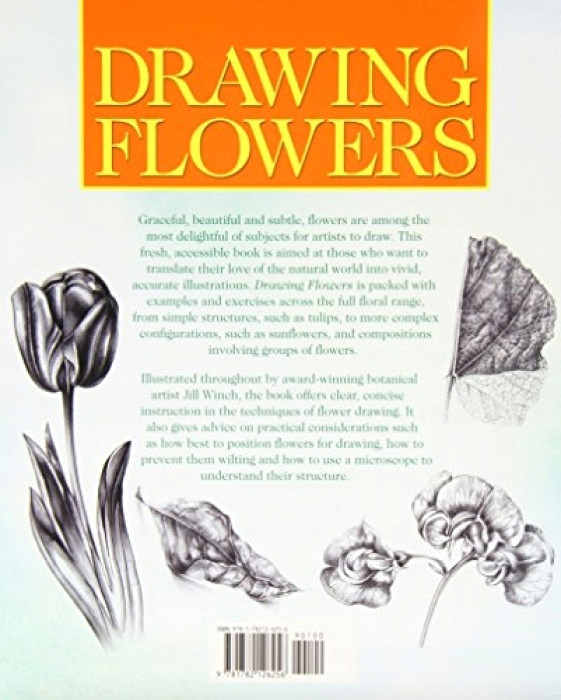 jill winch drawing flowers kliknij po wia cej informacji