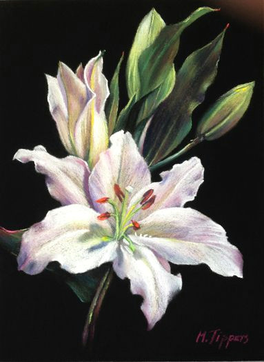 elegance soft pastel art pastel flowers pastel artwork pastel drawing big flowers