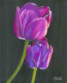 passion art print by laura bell pastel artworkwatercolor flowerswatercolor