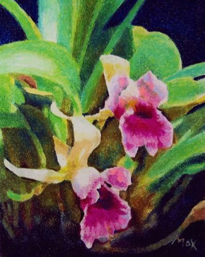 pastel drawing tutorial pink orchids