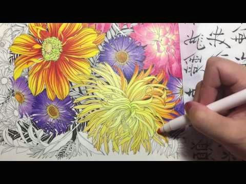 flower coloring tutorial 2 floribunda coloring book colored pencil youtube