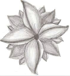 image result for easy sketches of flowers pencil drawings of flowers cool drawings flower