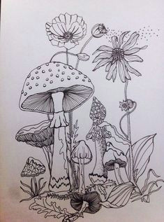 forest drawing forest sketch forest painting moon drawing mushroom paint mushroom