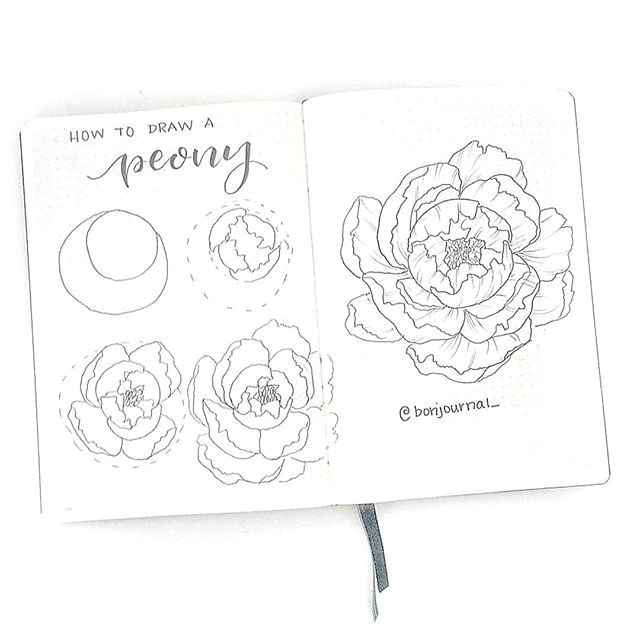 d how to draw a peonyd i did a peony tutorial a long time ago that was a bit simple so i thought i d do another