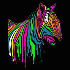 it s a freaking light up zebra rainbow zebra rainbow colors rainbow things bright