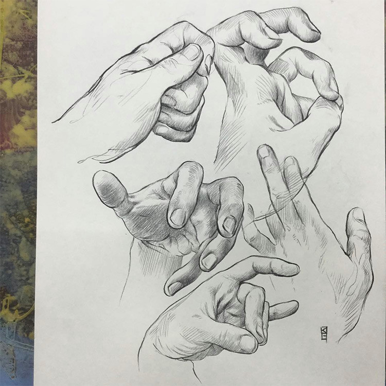 created by melanieviensworks a realist hand drawings with cross hatching