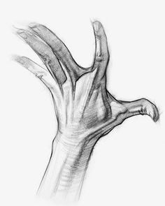 Drawing Hands Proko 61 Best Anatomy for Artists Images In 2019 Draw Human Anatomy