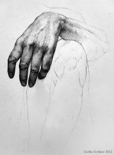 hand study 001 zsofia gyuker via tumblr en we heart it pencil art