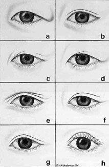 crease and contour eyeshadow asian eyes vs caucasian eyes hooded eyelids hooded eye makeup
