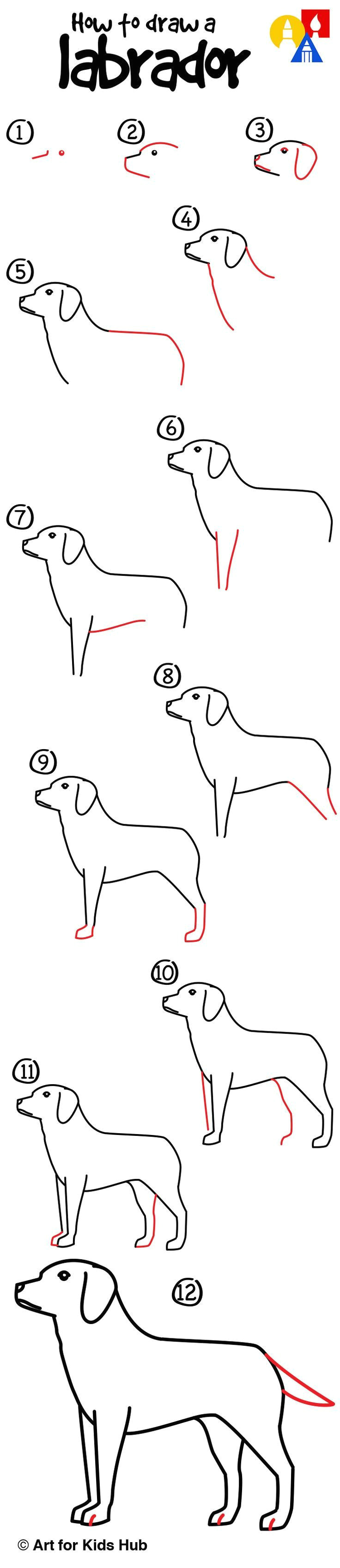 easy to draw fox 56 best stey by step drawing tutorials for kids images on pinterest