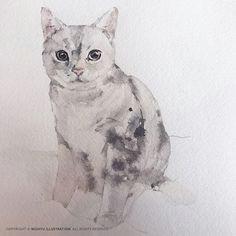 watercolor animals watercolor art drawing lessons drawing ideas cat art cobalt