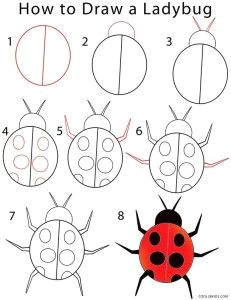 kids how to draw a ladybug step by step use chalk markers withour chalk mess easy