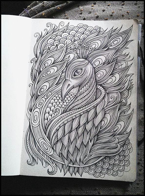 hand drawn peacock computer color art peacock sketch peacock art peacock design