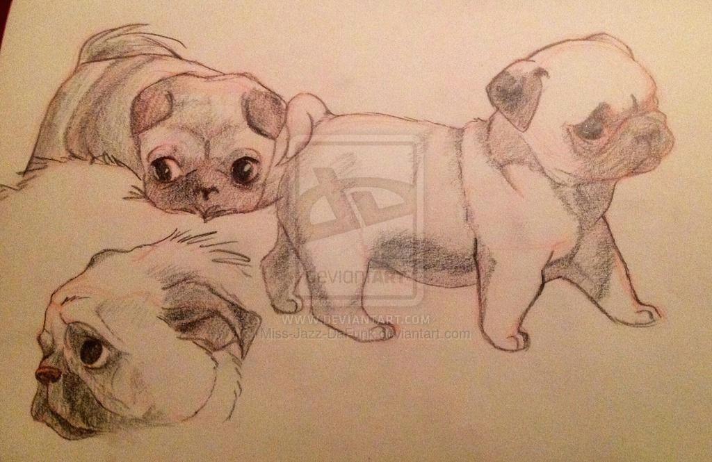 pugsies by miss jazz dafunk deviantart com on deviantart drawing ideasjazz traditionaldeviantart