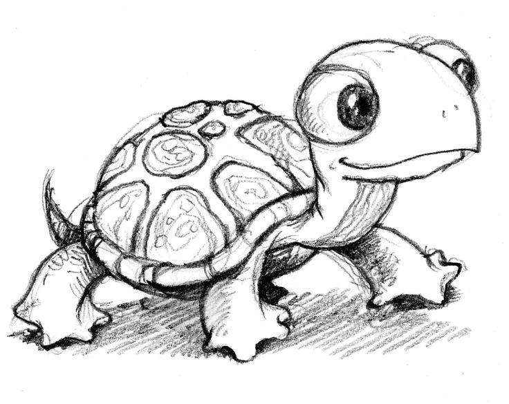 Drawing Ideas Turtle Turtle Tattoos Pinterest Drawings Cute Drawings and Art