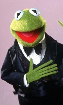 kermit the frog he s a person right kermit and miss piggy kermit